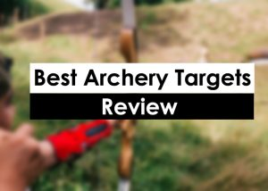 Best Archery Targets Review 2018 Good to Know