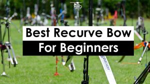 Best-Recurve-Bow-For-Beginners