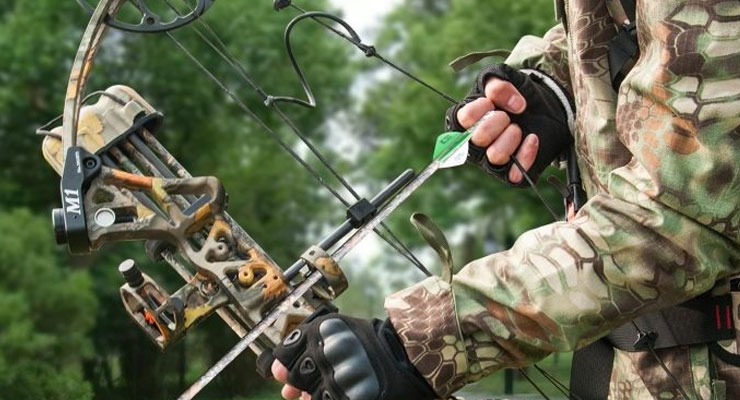 Crossbow vs Recurve Bow - What Is The Best Choice