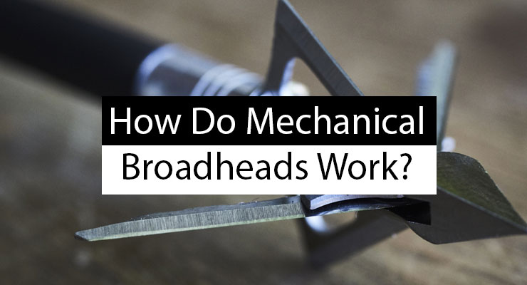How Do Mechanical Broadheads Work