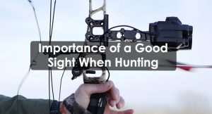 Importance of a Good Sight When Hunting