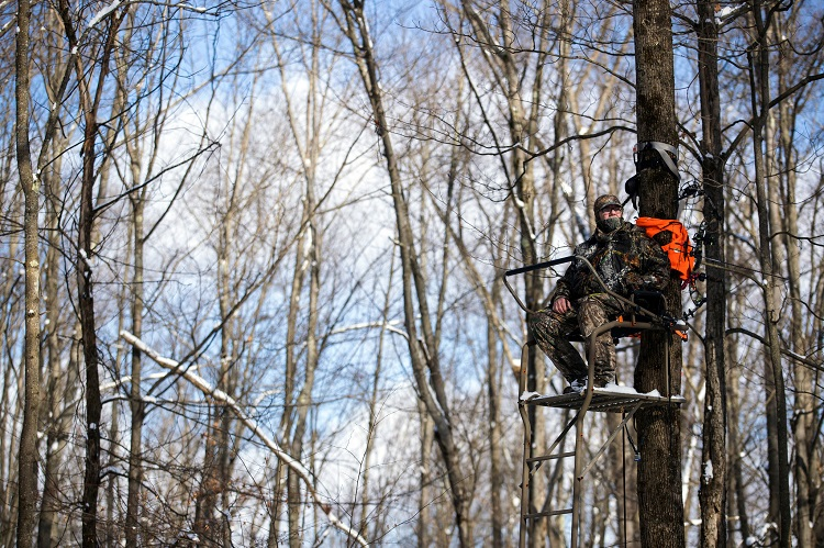 Best Ladder Stands for Bow Hunting